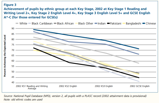 There are racial disparities in educational attainment. (Source: Department for Education and Skills)