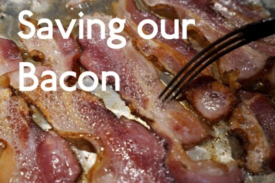 Photo illustration of bacon is fried up in a pan in a kitchen in Golden