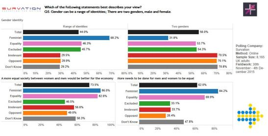 on-public-polling-and-feminism-tableau-4.JPG